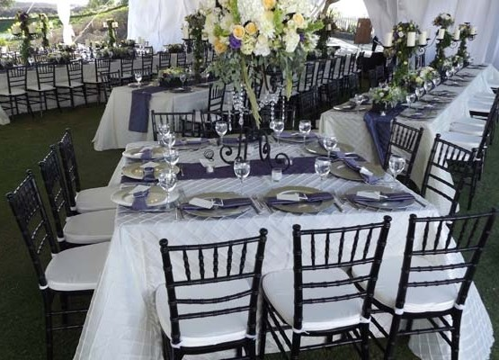 White Pintuck Ps Event Rentals